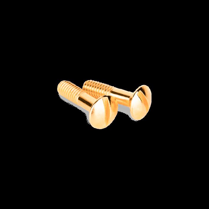 Винты для распределительной коробки/TV розетки WERKEL (золото) 2шт. WL18-22-01 Ретро